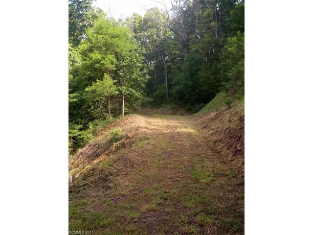 Lot T-50 548 N Haven Drive # T-50, Black Mountain NC 28711 - Photo 2
