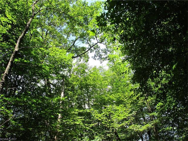 693-694-695 Oakridge Lane, Mars Hill NC 28754 - Photo 2