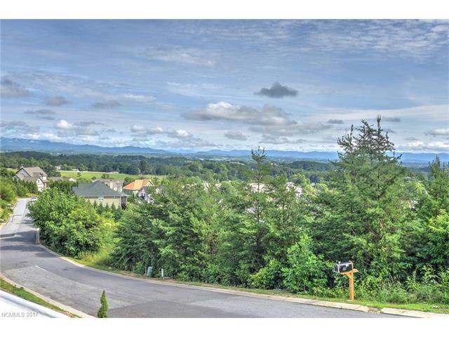129 Climbing Aster Way # 64, Asheville NC 28806