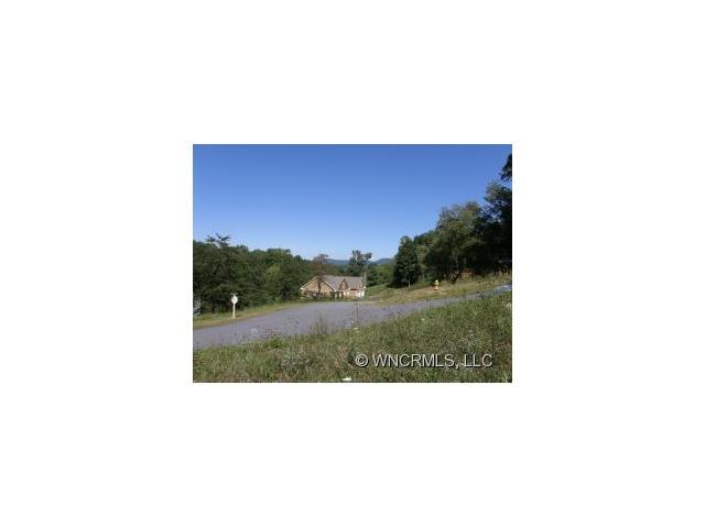 Lot #12 Magnolia Farms Drive # 12, Asheville NC 28806 - Photo 2
