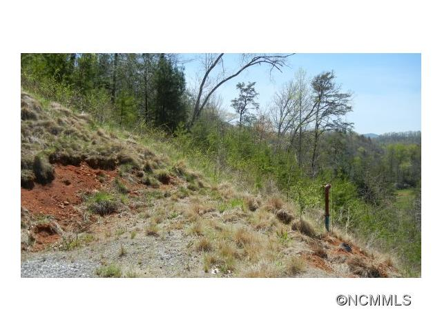 Lot 7 Mountain River, Cullowhee NC 28723 - Photo 2