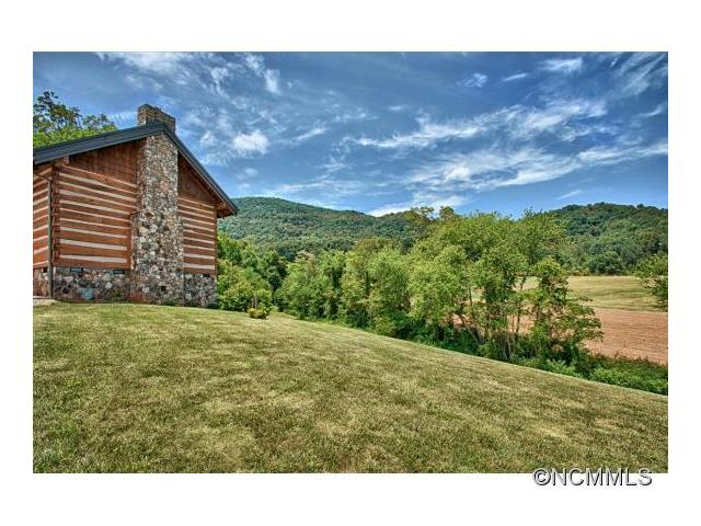 1305 Newfound Road, Leicester NC 28748 - Photo 2