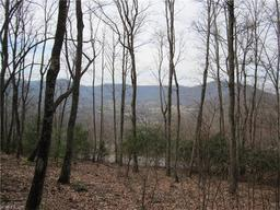 290 Secluded Hills Lane # LOT 37 Arden